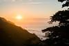 (Terrini) Tags: californiacoast goldengatenationalrecreationarea landsend sanfrancisco city park sunset trail urban