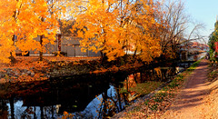 Panorama 3134_blended_fused_pregamma_1_fattal_alpha_1_beta_0.9_saturation_1_noiseredux_0_fftsolver_1 (bruhinb) Tags: bridge water reflectons canal towpath trail autumn hdr newhope pa usa thetowpathtrail delawarecanal foliage serene plant outdoor tree