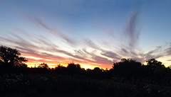 Painted Sky_9695 (Rikx) Tags: panorama paintedsky clouds sun evening nightfall adelaide southaustralia moon newmoon explore sunset outdoor sky landscape