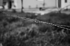 La Cerca de Cerca (rageforst) Tags: manzanillo colima fence mexico cerca pua security bw