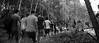 world war zlin (kaankurnaz) Tags: walk walking forrest ceska republic czech czechia erasmus people dekalitre leaf zlin praha prague