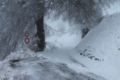 Lintres-Pont de la Flée Pierre fendue (Stefho74) Tags: sallanches pontdelaflée lapierrefendue promenaderaquettes randonnéeenmontagne neige rhonealpes montagne