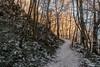 DSC_1060-HDR (K 3 N N Y) Tags: nikon d500 eifel schnee snow hohe acht hdr high dynamic range