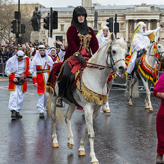 170101 0544 (steeljam) Tags: steeljam nikon d800 london new year parade lights camera action lawrence arabia horse