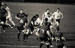 Charge (gregory.sevin) Tags: colombes îledefrance france fr rugby racing92 munster