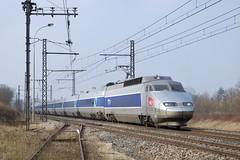TGV Sud Est 16 (SylvainBouard) Tags: sncf tgv tgvsudest train