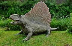 Dimetrodon.Baltow dino park (Tery14) Tags: dinosaurus park baltow poland dimetrodon