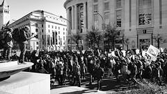 2017.02.04 No Muslim Ban 2, Washington, DC USA 00524