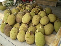 Jack Fruit (alangregory1) Tags: fruit jackfruit thailand food
