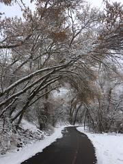 IMG_2217 (augiebenjamin) Tags: winter provocanyon mountains orem provo lindon utah snow clouds trees sky byu brighamyounguniversity art