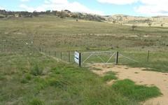 11 Mount Darling Road, Wyangala NSW