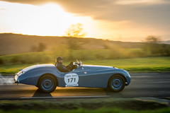 Tour Auto 2015 - Jaguar XK (Guillaume Tassart) Tags: auto classic race tour rally automotive racing jaguar legend motorsport xk