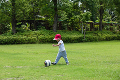 BM7Q4063.jpg (Idiot frog) Tags: trees boy cute adam green grass leaves yard canon ball eos restaurant kid child soccer taiwan     playball               1dx newtaipei