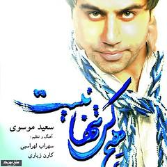 دانلود آهنگ جدید سعید موسوی به نام هیچ کس تنها نیست