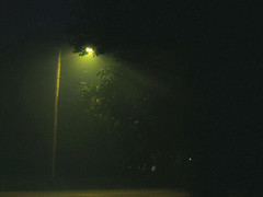 Smoke on the 4th (PrincessEv) Tags: usa fog america streetlight fireworks smoke unitedstatesofamerica eerie spirits spooky american ghosts 4thofjuly july4 pixels