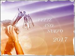 FELIZ AÑO NUEVO,HAPPY NEW YEAR,BONNE ANNÉE,З НОВИМ РОКОМ, (Pepa Morente ( 1.500.000 de VISITAS )) Tags: feliz año nuevo 2017 ilusión diversión amor compañía luces felizañonuevo happynewyear bonneannée зновимроком mutluyillar sretnanovagodina felizanonovo gottnyttår godtnyttår hyvääuuttavuotta newannofelix hauolimakahiki buonanno happynewjoer