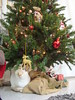My Cat loves the Christmas tree <3 (Dollsandtoys) Tags: cats catslovers felinos gatos catsphotos pets