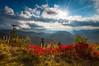 North Carolina Blue Ridge Parkway Scenic Landscape in Autumn (Dave Allen Photography) Tags: northcarolina autumn nc blueridge scenic landscape asheville fall foliage mountains appalachian starburst parkway outdoors outdoorphotographer nature lightrays sunbeams vibrant blueridgeparkway smokymountains crepuscular nationalpark