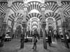Mezquita Catedral de Córdoba, Andalucía, Spain (Angel Talansky) Tags: cordoba andalucia spain mezquita catedral columnas arcos turismo monumento mosque mosquee mezquitacatedral greatmosque turistas cathedral 7mm zuiko zuiko7mm 1000