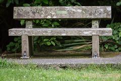 IMG_6358.jpg (Brendon & Keryn) Tags: zealandia summer newzealand northisland wellington