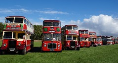 Quite the line-up (Kim's Pics :)) Tags: barton buses showbus rally britianslargest display red bus historic iconic doubledecker transportation eras shiny colorful sunny day donington uk england unitedkingdom