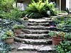 Janesville, WI, Limestone Stairs in the Backyard Garden (Mary Warren (7.8+ Million Views)) Tags: janesvillewi nature flora plants green backyard garden stairs steps rocks limestone pottedplants ferns