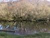 6570 Reflections in Llyn Padarn bay (Andy - Busyyyyyyyyy) Tags: 20170102 lake lll llynpadarn mmm mtsnowdon reflections rrr snow sss water www yrwyddfa