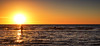walk in the light (Bec .) Tags: bec canon 80d 1022mm semaphorepark beach ocean sea woman walking silhouette swimmers hot heatwave adelaide southaustralia walkinthelight sunset light sun reflections heat