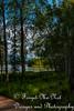 IMG_8527 (Forget_me_not49) Tags: alaska alaskan wasilla lakes lucillelake boardwalk pier sunrise waterways