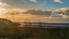 New Brighton (joanjbberry) Tags: newbrighton wallasey merseyside coast coastline grass clouds sea water