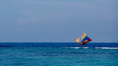 Fishing (Ennev) Tags: pentaxsmcda18135mmf3556edalifw sail k3 k3ii pentax january caribbean celebritycruises sailing labadie haiti pentaxk3ii boat outdoor 2017 sailboat celebrityequinox
