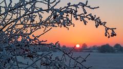 Sonnenuntergang (oliver_hb) Tags: sonnenuntergang achim bollen
