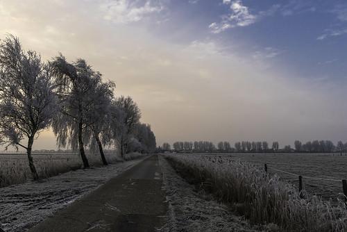 17.01 - 090255 Winter
