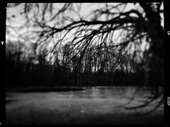 Presage (Creepella Gruesome) Tags: iphone6splus hipstamatic nature winter trees branches silhouettes pond ice blackandwhite blur spooky dark mysterious phantasm