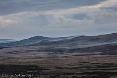 Preseli Hills, Pembrokeshire (janevans35) Tags: preselihills pembrokeshire preseli moorland nationalpark
