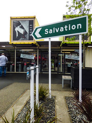 The Salvation of Your Sales (Steve Taylor (Photography)) Tags: salvation sales maher crazy further reductions restart mall art design sign poster sticker container bench seat shop man newzealand nz southisland canterbury christchurch cbd city plant flax tree spring signothetimes markcatley
