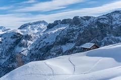 Nice hut I (luggi9) Tags: winter 2017 austria ski skitour tour hike ride snowbaord snow peak mountain alps liebeseck tauern salzburg radstädtertauern