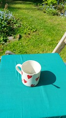 A cup on a chair in the garden High Angle View Blue Grass No People Outdoors Close-up Day Pillow Cushion Forget Me Not Garden Hearts Cup Mug Love Coffee Tea Romantic Sunshine Wales Green Color Cosy Comfy  Summer Spring (Linandara) Tags: highangleview blue grass nopeople outdoors closeup day pillow cushion forgetmenot garden hearts cup mug love coffee tea romantic sunshine wales greencolor cosy comfy summer spring