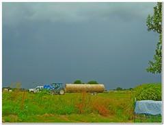 Hauling Hay (Snapshots by JD) Tags: oklahoma rain hay newhollandwestville