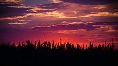 Summer Sunrise II (Cait Sumfin) Tags: morning light shadow sun nature sunrise rising dawn early colorful bright good vivid rise