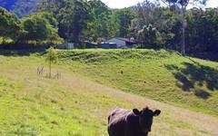 9 Appletree Road, Bellangry NSW