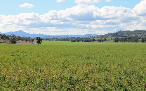 132 Mountain Station Road, Merriwa NSW 2329