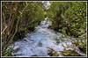 Río Algar, aguas bravas (edomingo) Tags: edomingo nikond5000 nikkor18105 algar callosadensarrià alicante cascadas costablanca