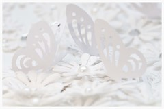 Dreaming of Halcyon Days (jeannie debs) Tags: macromondays justwhitepaper butterflies flowers daisies paper peace calm joy dreaming serene pleasant balmy tranquil peaceful temperate mild quiet gentle placid still macro white