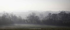 22/365 (Liz Barber) Tags: 0117 2016 forconsiderationonly lb lizbarber lizbarberphotography misty morning trees regression field frost the downs bright