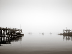 no fishing today.jpg (dwoodpics) Tags: morning spring dock fishing wharf coastal water nautical fog pilings maine commercialboat blackwhite