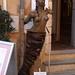 PICT6105 - Provence _ Roussillon