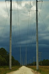A Storm Rolling in (tamracamera23) Tags: nature forest outdoors woods florida powerlines stormclouds wma centralflorida wildlifemanagementarea tosohatchee christmasflorida