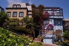 Russian Hill - Lombard Street 1 (luco*) Tags: usa states californie california san russian hill lombard street maisons houses francisco étatsunis united america damérique amérique