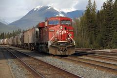 CANADA (Andrew Mansfield - Sheffield UK) Tags: trains alberta banff cp railways cpr banffnationalpark freighttrain canadianpacificrailway candada banffstation 8838